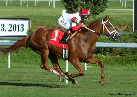 THANK-YOU-MARYLOU-The-Tippett-Stakes-16th-Running-07-13-13-CNL-Finish1-684x488