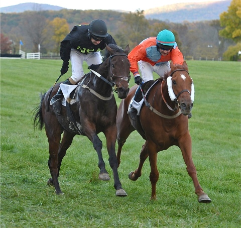 WOLVERTON (L) and PRIZED PUPIL (R) (Douglas Lees Photography)